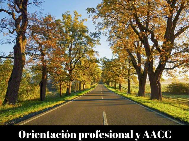 Orientación profesional y AACC